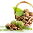 Walnuts with green leaves in basket, isolated on white — Stock Photo