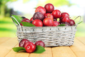 Ripe plums in basket on wooden table on natural background — Stock Photo