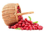 Fresh cornel berries in wicker basket, isolated on white — Stock Photo