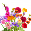 Stock Photo: Beautiful bouquet of different flowers isolated on white