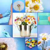 Collage of allergy theme — Stock Photo