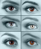 Collage of beautiful women's eyes — Stock Photo