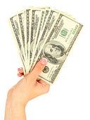 Mano femmina con dollari, da vicino, isolato su bianco — Foto Stock