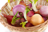 Sprouting onions in basket close-up — Stock Photo