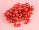 Redcurrants on pink background — Stock Photo