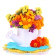 Stock Photo: Bouquet of marigold flowers in watering can isolated on white