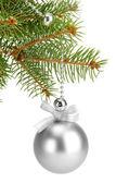 çam ağacı, beyaz izole noel topu — Stok fotoğraf