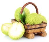 Osage Orange fruits (Maclura pomifera) in basket, isolated on white — Stock Photo