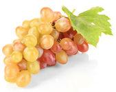 Uva dulce madura, aislado en blanco — Foto de Stock