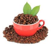 Zrnková káva v šálku izolovaných na bílém — Stock fotografie