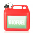 Stock Photo: Bio fuels in canister isolated on white
