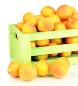 Fresh natural apricot in wooden box isolated on white — Stock Photo