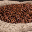 Coffee beans in bag close-up — Stock Photo