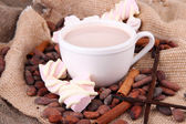 Cocoa drink and cocoa beans on sackcloth background — Stock Photo