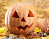 Halloween pumpkins and autumn leaves, on yellow background — Stock Photo