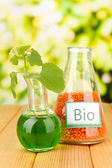 Conceptual photo of bio fuel from lentil. On bright background — Stock Photo