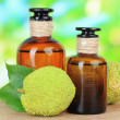 Osage Orange fruits (Maclurpomifera) and medicine bottles, on wooden table, on nature background — Stock Photo #31905111