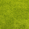 Green carpet texture — Stock Photo #31905255