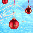 Christmas toys hanging on branch on blue background — Stock Photo