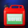 Stock Photo: Bio fuels in canister on blue background