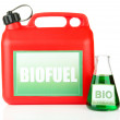Stock Photo: Bio fuels in canister and vial isolated on white