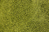 Green carpet texture — Stock Photo