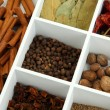 Assortment of aroma spices in white wooden box close up — Stock Photo