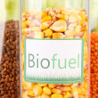 Stock Photo: Conceptual photo of bio fuel. On bright background