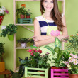 Beautiful girl florist with flowers in room — Stock Photo
