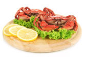 Boiled crabs on wooden board, isolated on white — Stock Photo