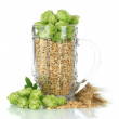 Glass of fresh green hops and barley, isolated on white — Stock Photo