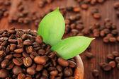 Kaffebönor i skål på trä bakgrund — Stockfoto