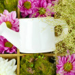 Stock Photo: Beautiful white and purple flowers with watering can in wooden box close-up