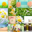 Collage of allergy theme — Stock Photo #32501499
