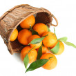 Ripe sweet tangerine with leaves in basket, isolated on white — Stock Photo #32501521