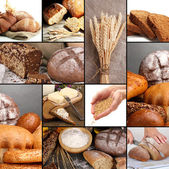Bread and harvesting wheat collage — Foto Stock