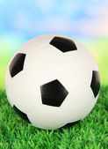 Soccer ball on green grass on bright background — Stock Photo