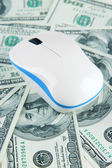 компьютерная мышь на долларов крупным планом — Стоковое фото