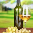 Ripe grapes, bottle and glass of wine, on bright background — Stock Photo #32560525