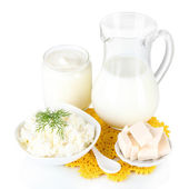 Fresh dairy products isolated on white — Zdjęcie stockowe