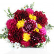 Bouquet of dahlia flowers, isolated on white — Stock Photo #32684657