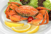 Boiled crab on white plate with salad leaves and tomatoes, close-up — Stock Photo