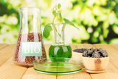 Conceptual photo of bio fuel. On bright background — Stock Photo