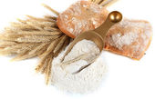 The wholemeal flour in scoop isolated on white — Stock Photo