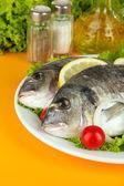 Dorado fish on table close-up — Stock Photo