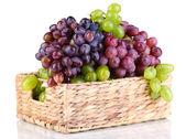 Uvas maduras de verdes e roxas no cesto isolado no branco — Foto Stock
