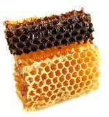 Sweet honeycombs isolated on white — Stockfoto