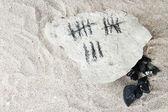 Contando días dibujando palos en piedra con carbón sobre fondo de arena — Foto de Stock