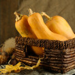 Autumn composition with pumpkin — Stok fotoğraf