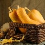 Autumn composition with pumpkin — ストック写真
